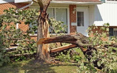 Storm Safety – Post Storm Checklist